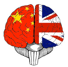 Download [PDF] The Bilingual Brain Free Online | New Books ...